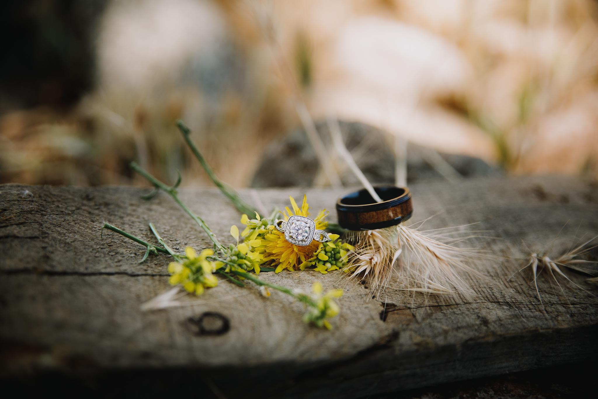 Morgan Hill California Natural Light Documentary Lifestyle Wedding Engagement Photographer