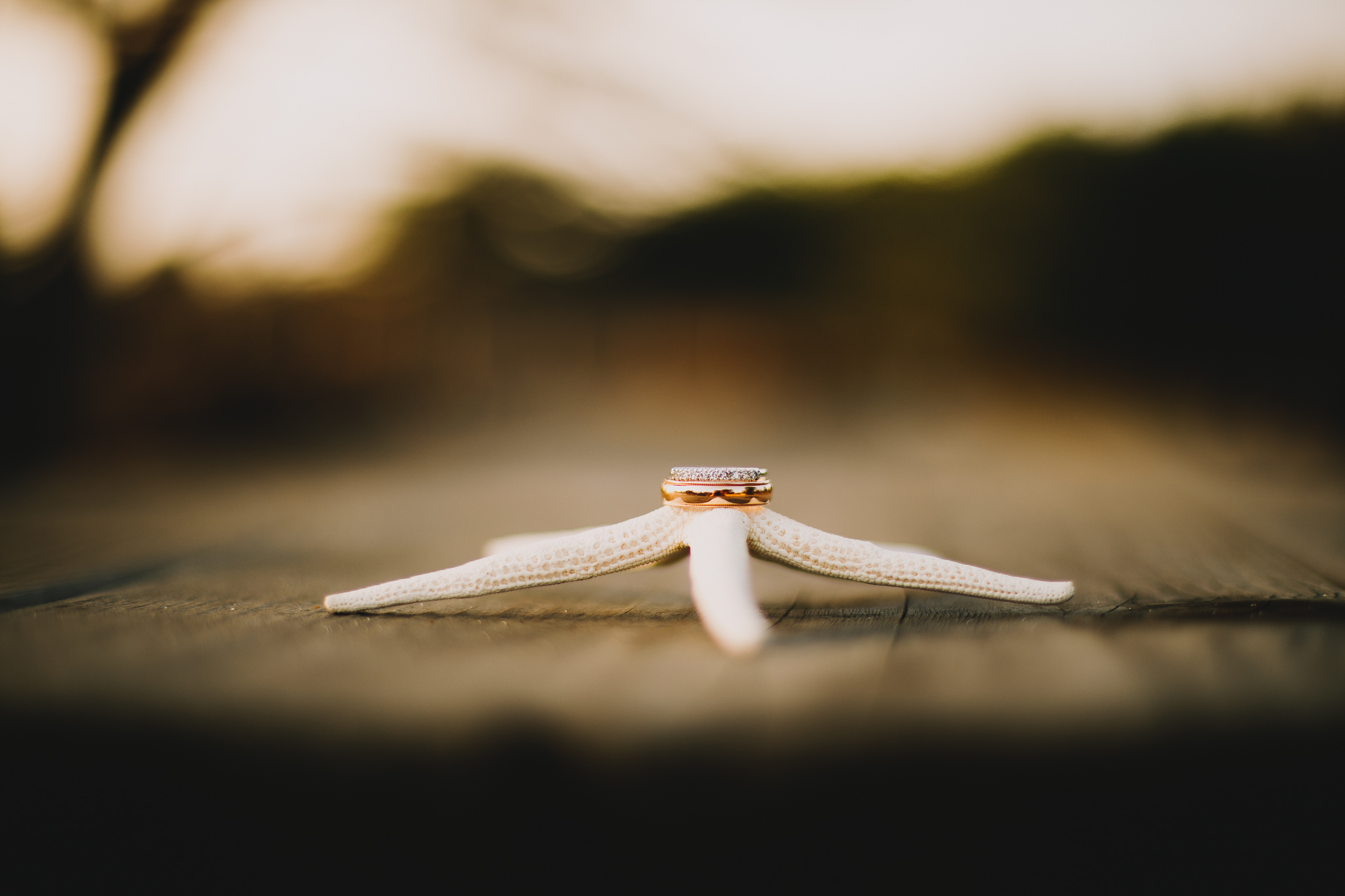 Archer_Inspired_Photography_Pacific_Grove_Ansilomar_Beach_Carmel_Valley_Wedding-150.jpg