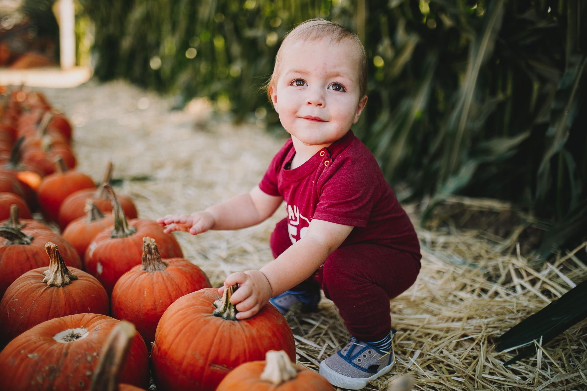 Archer_Inspired_Photography_Pumpkin_Patch_Morgan_Hill_Fall_Family_Photos-23.jpg