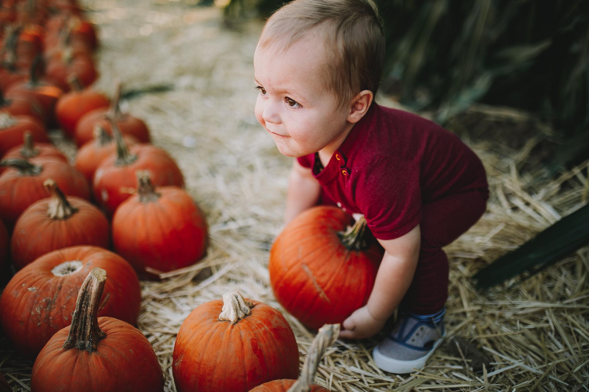 Archer_Inspired_Photography_Pumpkin_Patch_Morgan_Hill_Fall_Family_Photos-41.jpg