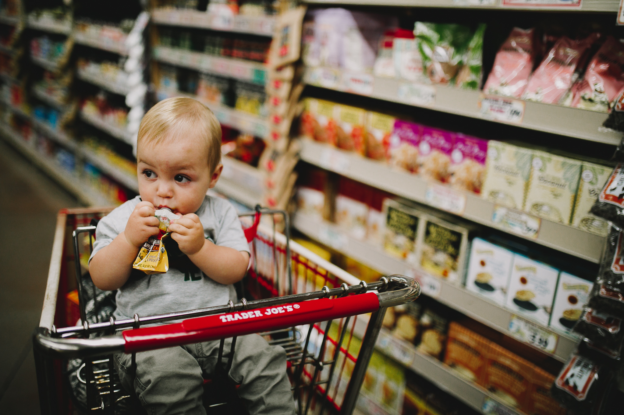 Archer_Inspired_Photography_Trader_Joes_Lifestyle_Photographer_Morgan_Hill_California-74.jpg