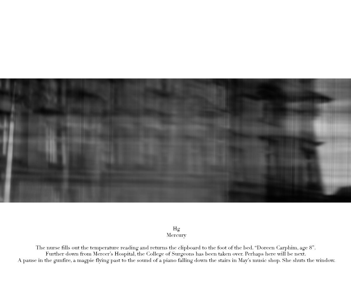 53cm x 153cm pigment print on Hahnemühle Photo Rag edition 3 + 1 A/P
