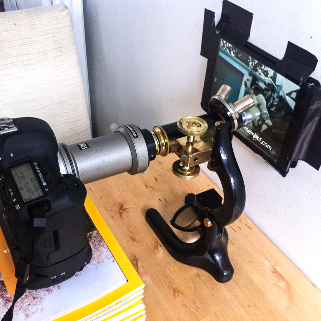 Photomicrography in progress