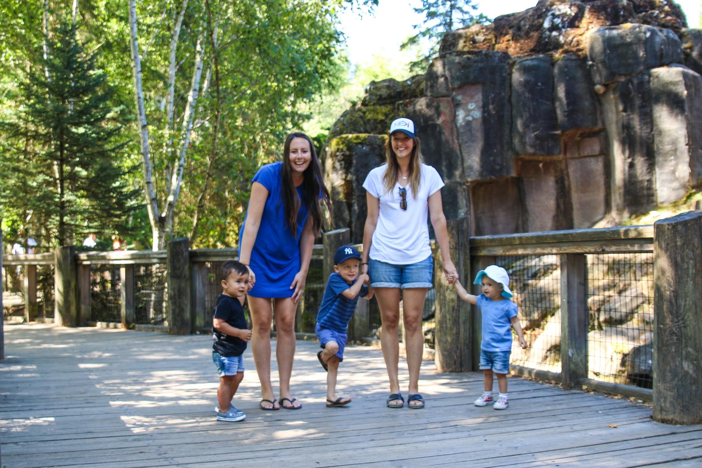 woodland zoo-4.jpg