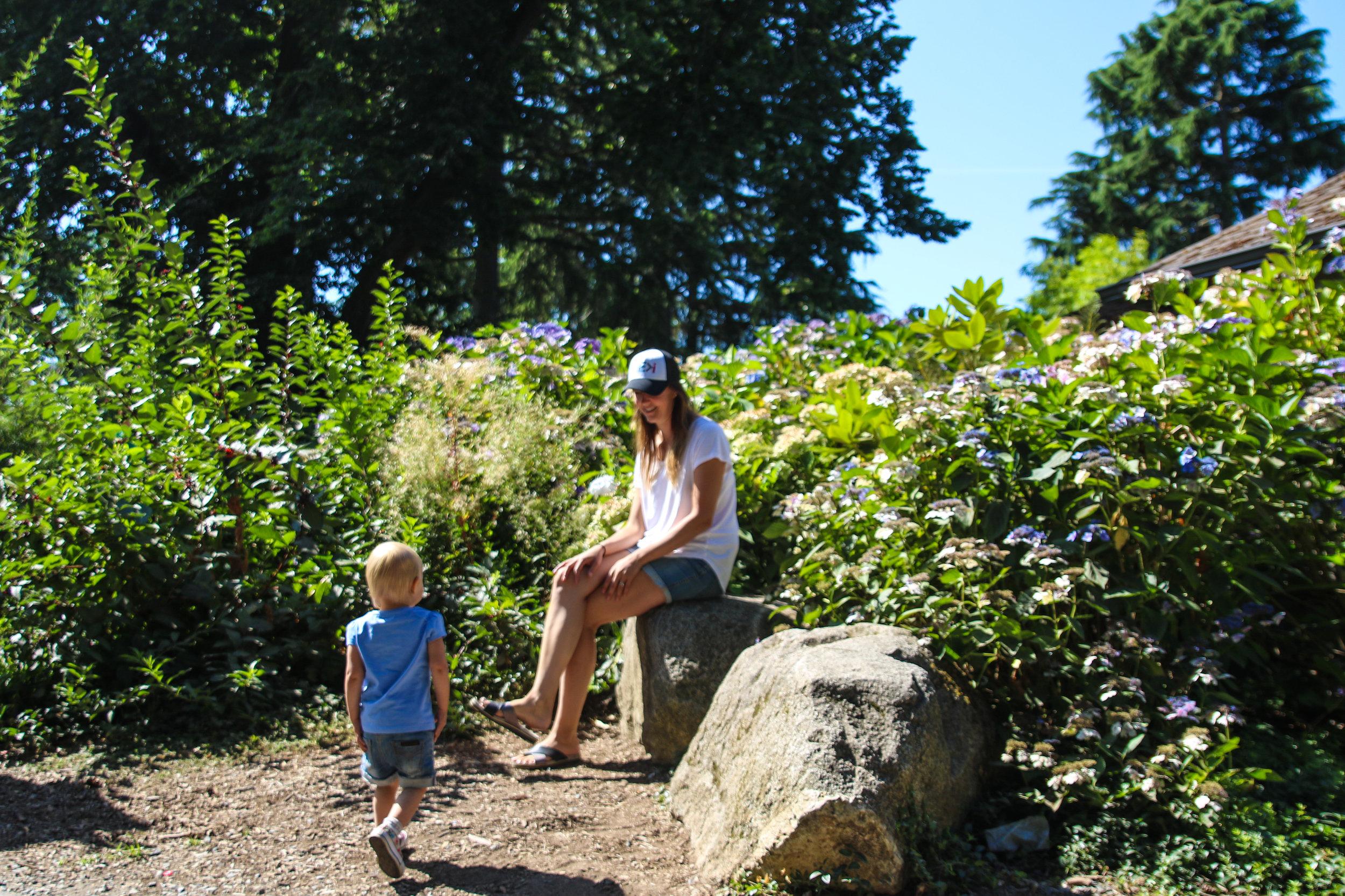 woodland zoo-7.jpg