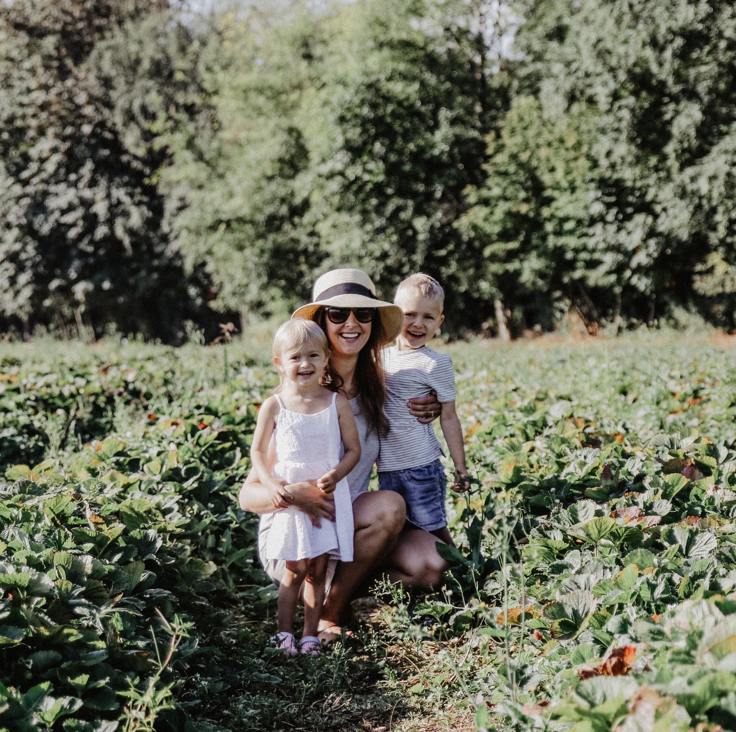 Driediger farms-8.jpg