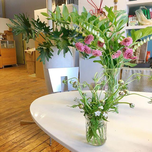 #studio #coffebreak made better by #residentartist @gracekimflowers ❤️🌸