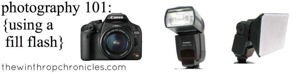 fill-flash.jpg