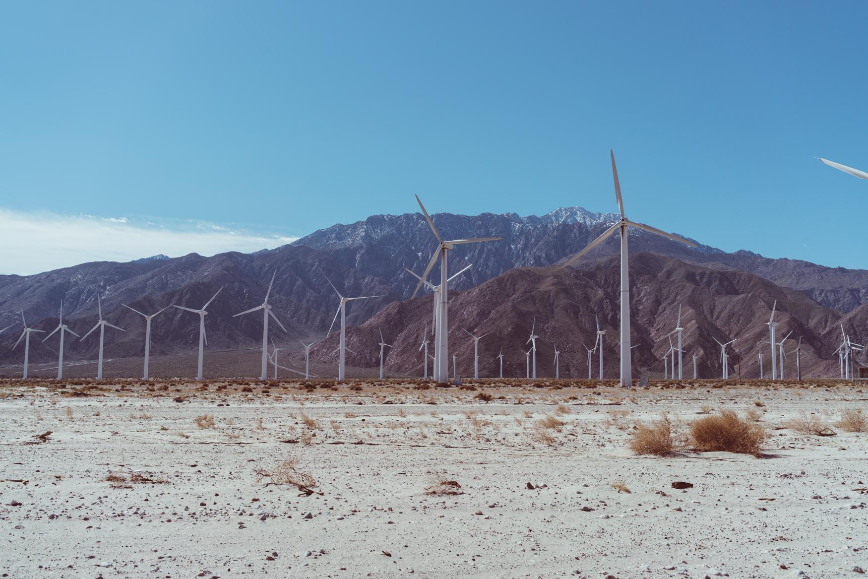Palm Springs Windmills