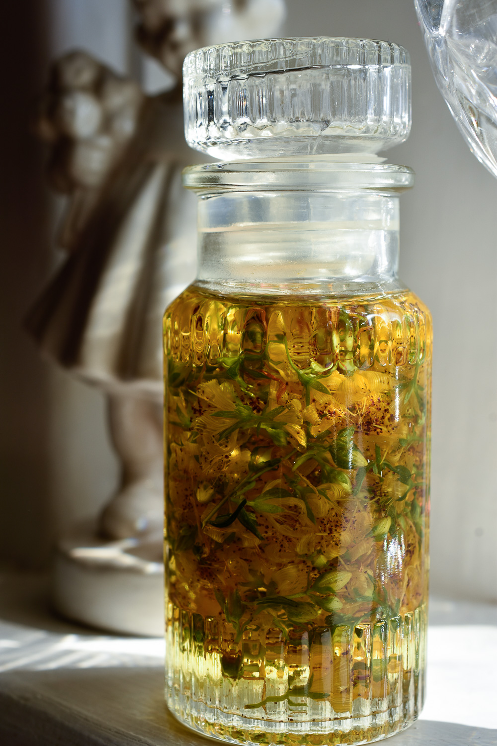 Oil Infusion of St. John's Wort ( Hypericum perforatum )