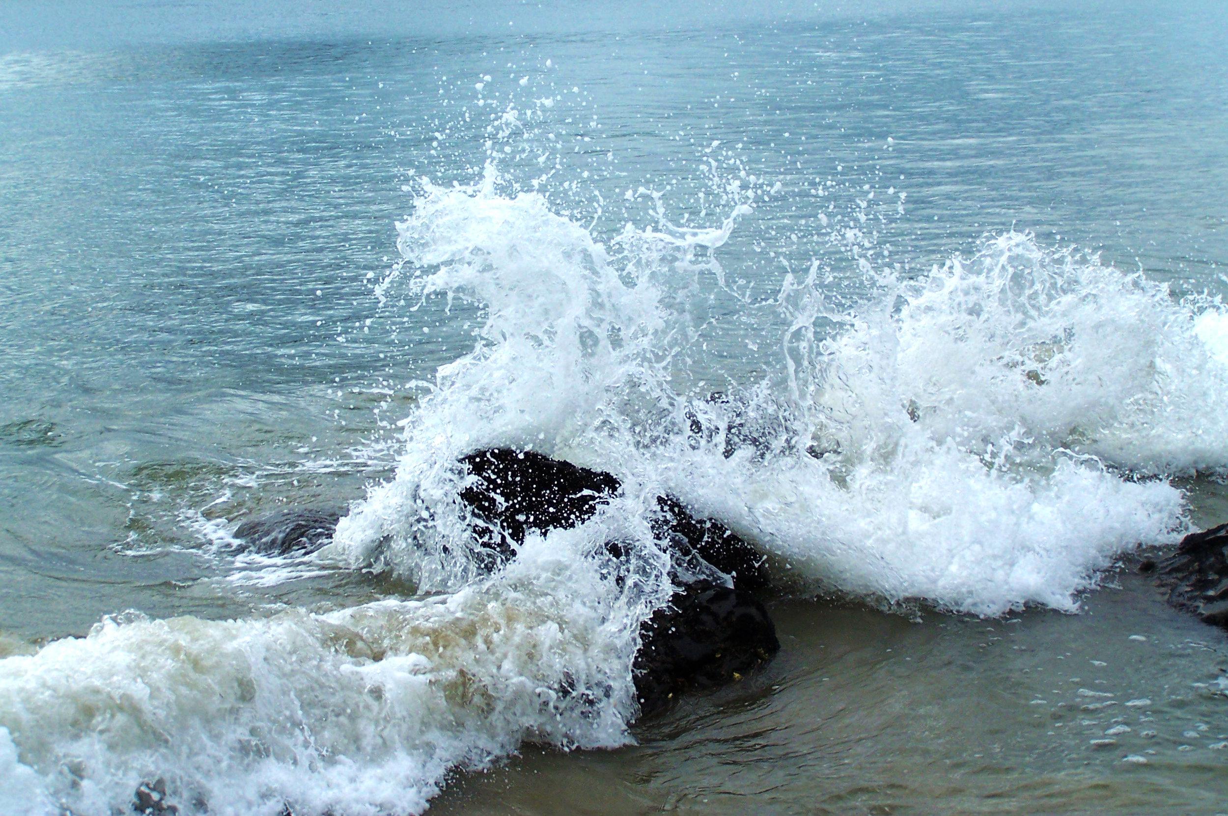 water_serpent_by_mollyrulz9999-d32jd7t.jpg
