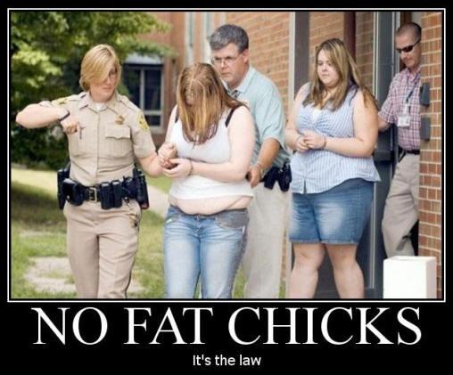 no-fat-chicks1.jpeg