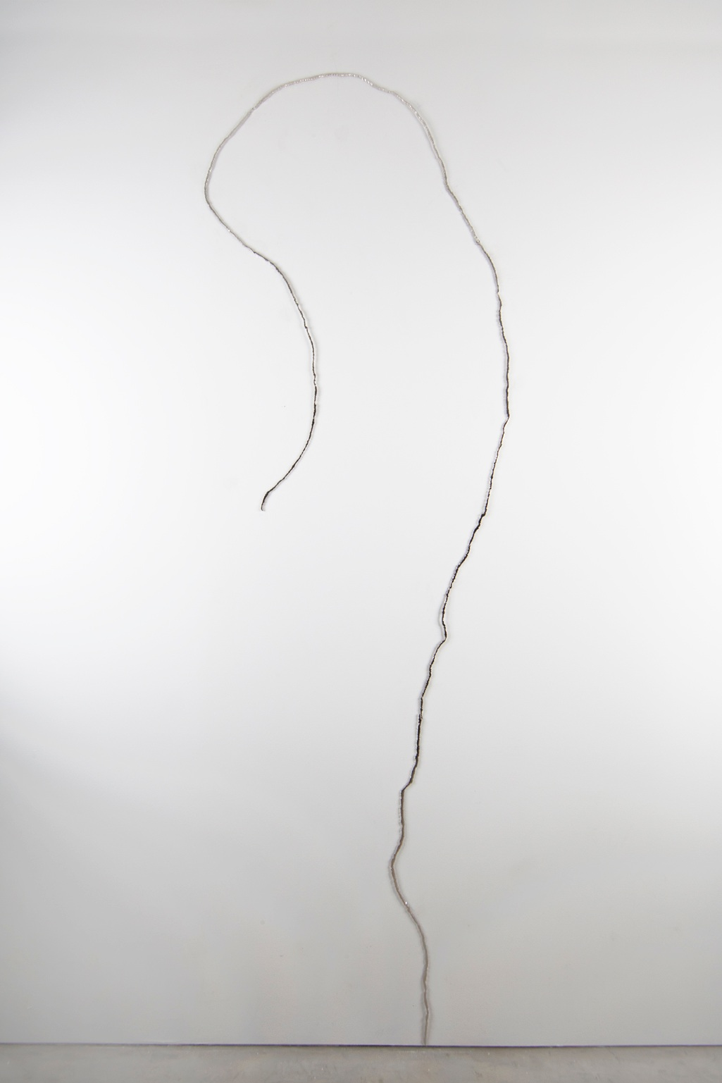 Misteriosa, 2013. Nickel plated and mirror polished steel, 120 x 51 x .25 inches -