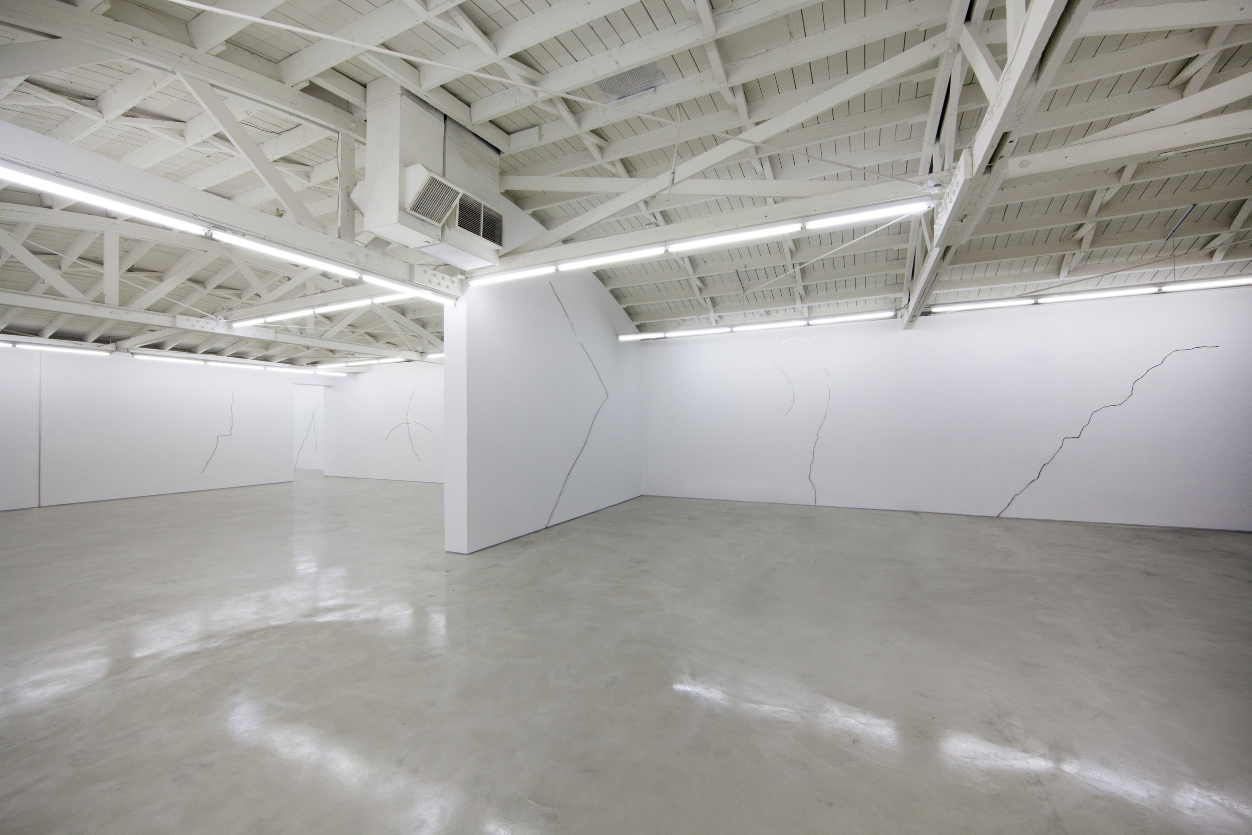 Lines and cracks and zebras and horsesSolo Exhibition | OHWOW | Los Angeles, CA | 2013 -