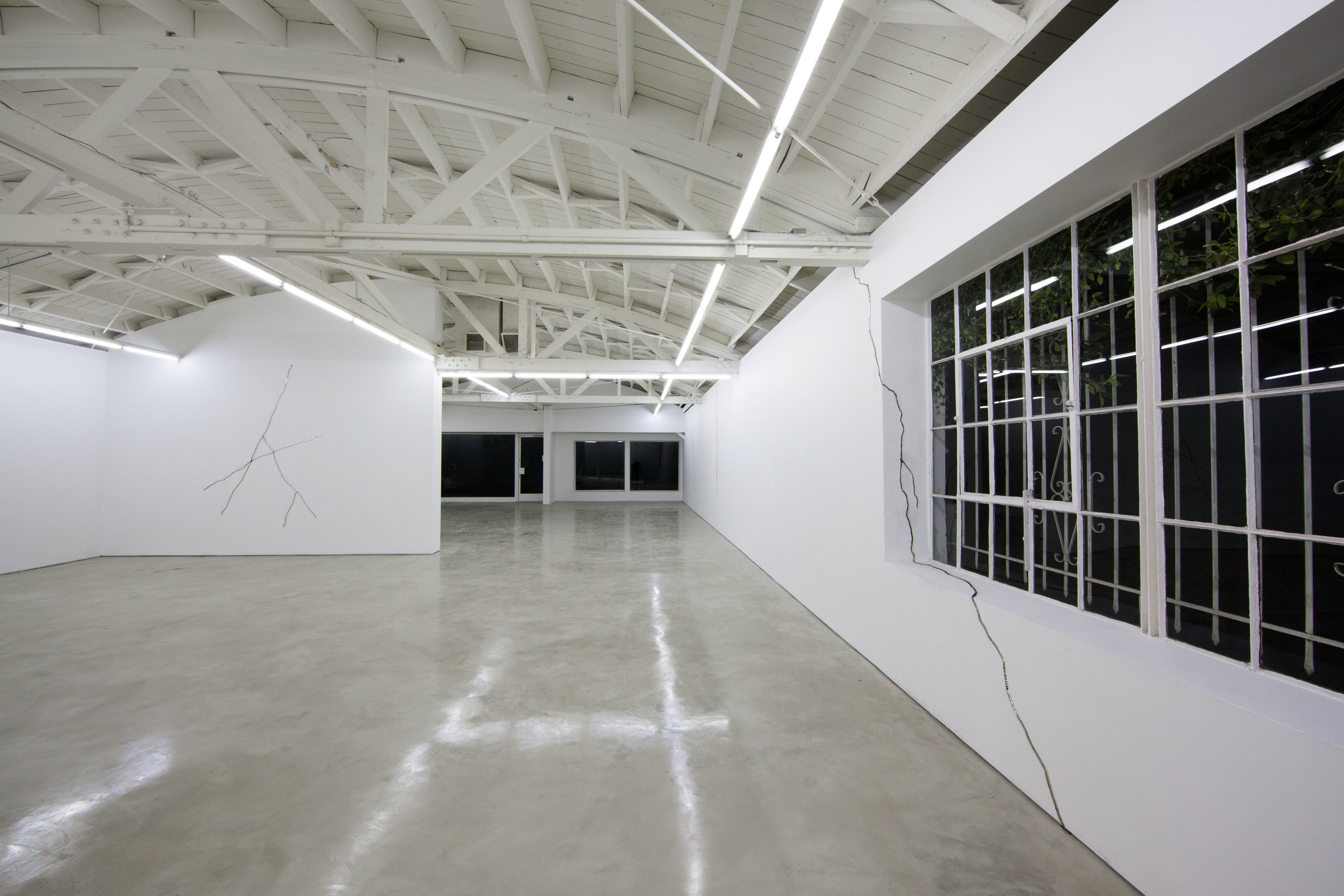 Lines and Cracks and Zebras and Horses - Solo Exhibition at OHWOW, Los Angeles