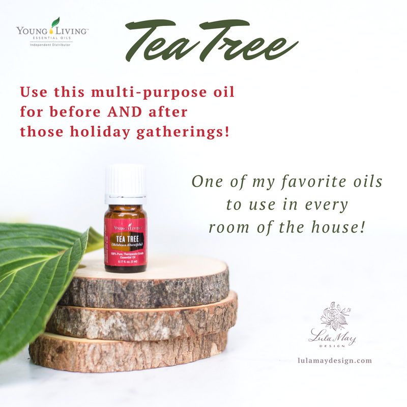 Tea Tree- November Promotions.png