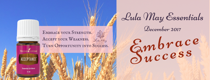 December - Lula May Essentials Embrace Success Banner.png