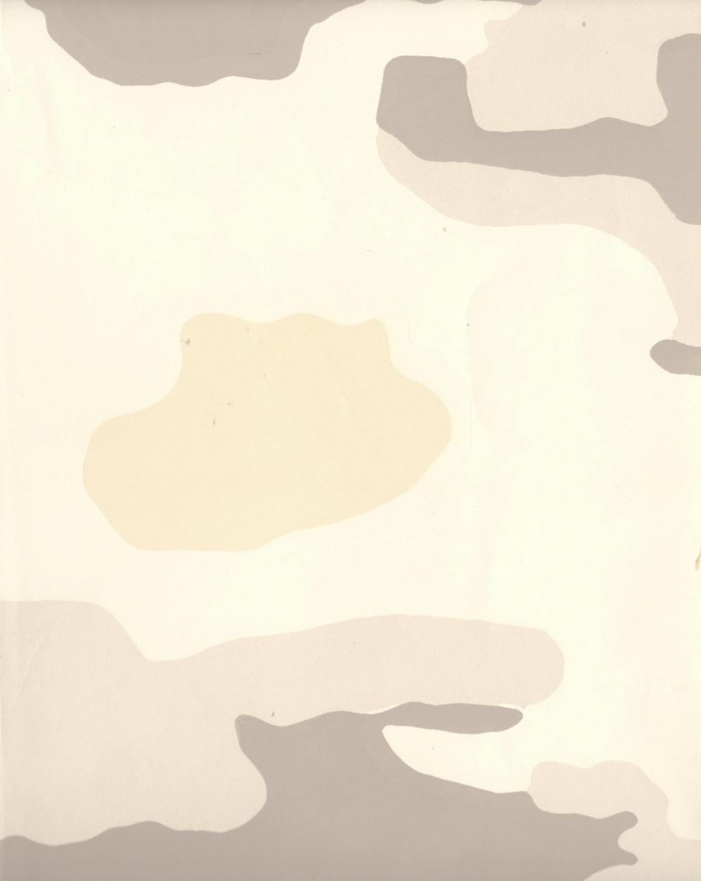 DESERT STORM WP6016