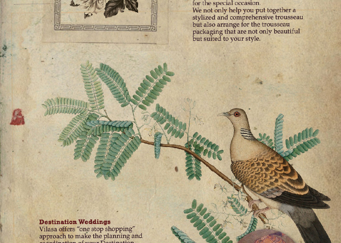 Page Detail.