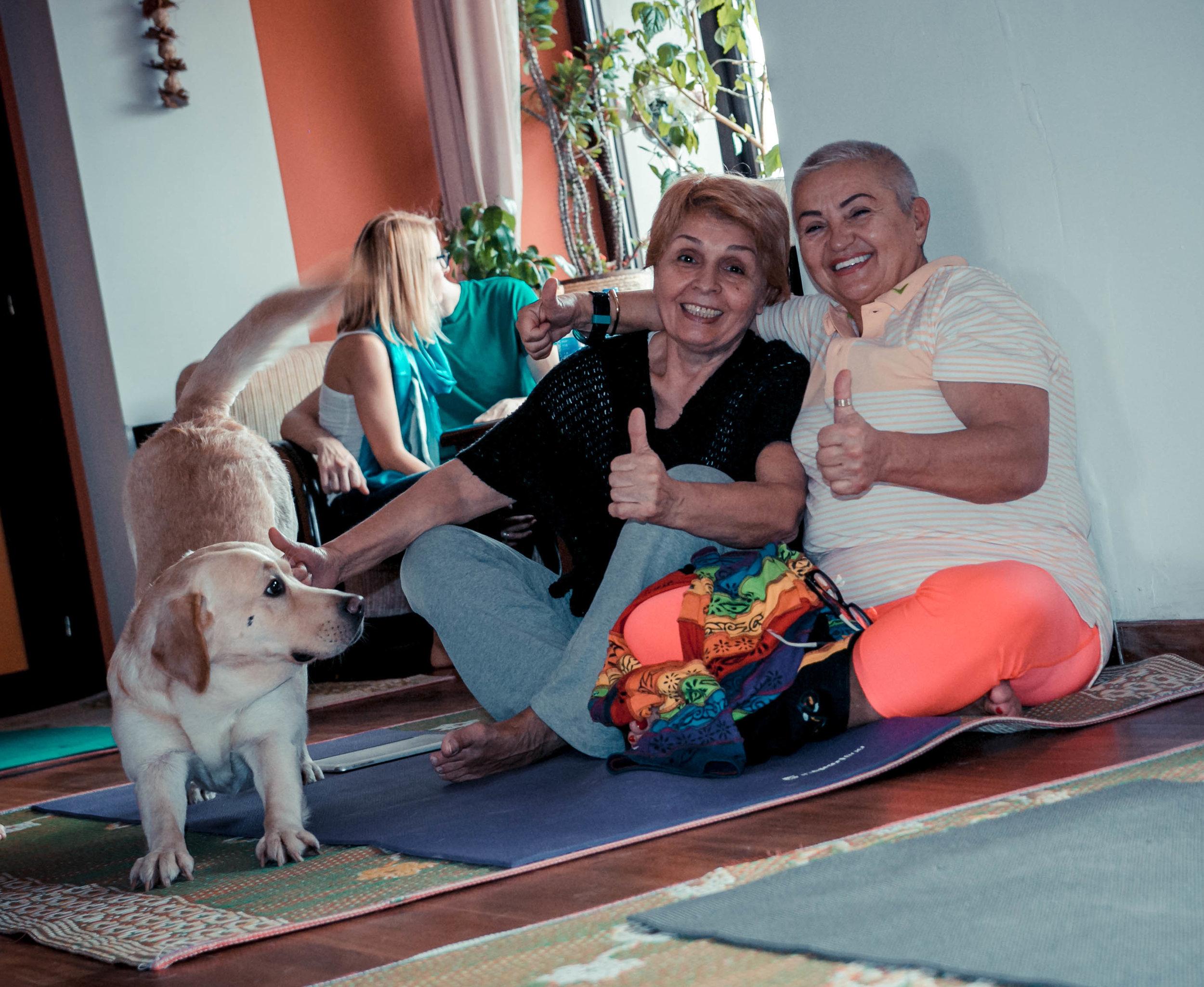 yoga bucuresti, postura, tabara de yoga, asana