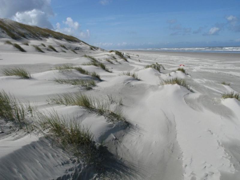 Zee-en-duinen.jpg