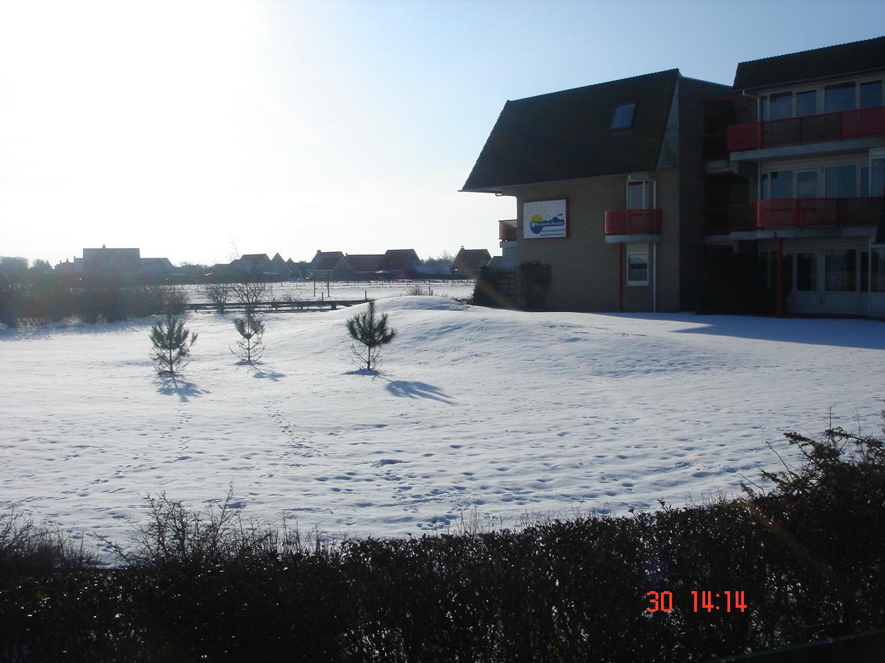 laatste fotos tot jan 2010 207.JPG