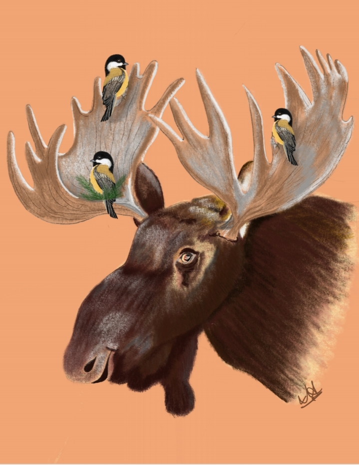 Moose and Friends.jpg