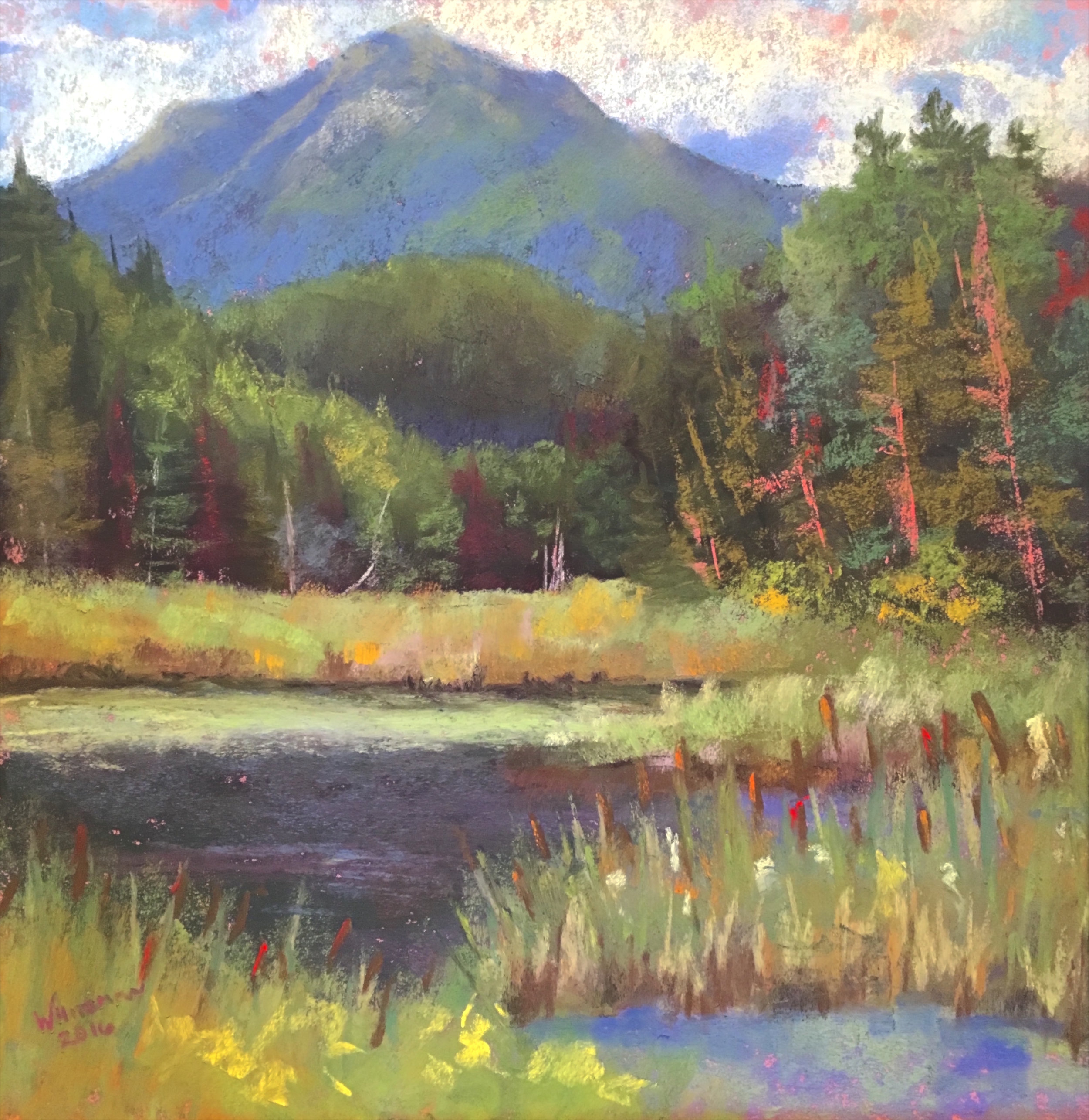Plein Air Painting from the Adirondack Plein Air Festival, 2016