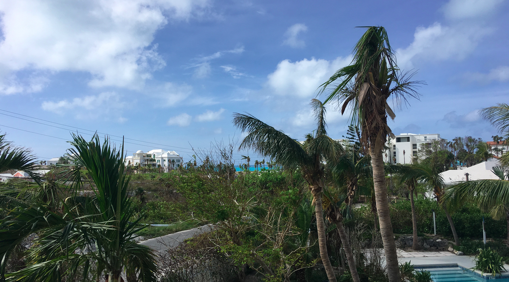 """The """"now"""" view from the apartment we stay when you stay in Villa Capri. Bonus? We now have an ocean view."""