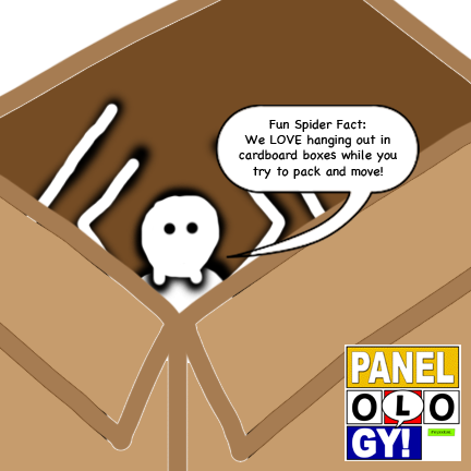 Spider-Box.png