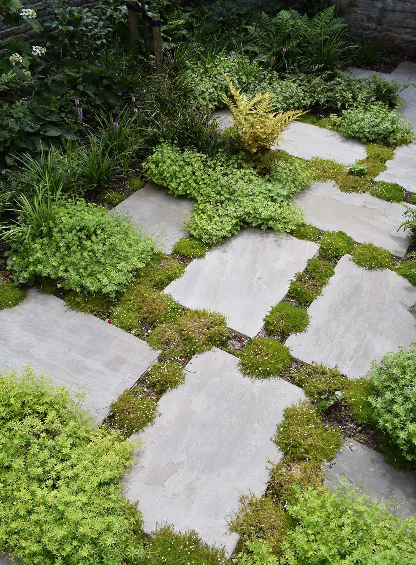 paysagiste_steyaert_bruxelles_jardin_marches_gres_textures_compact