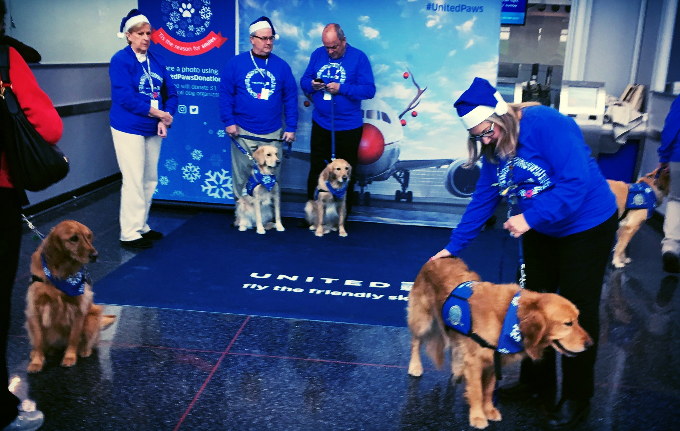 I'm  definitely  grateful for the care puppies I saw today in the Chicago airport on my way back to Atlanta.