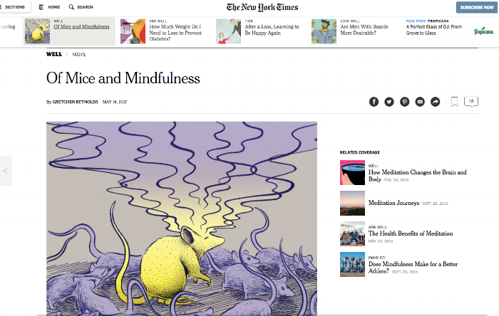 Interesting article on the mouse model for meditation, from the NY Times.