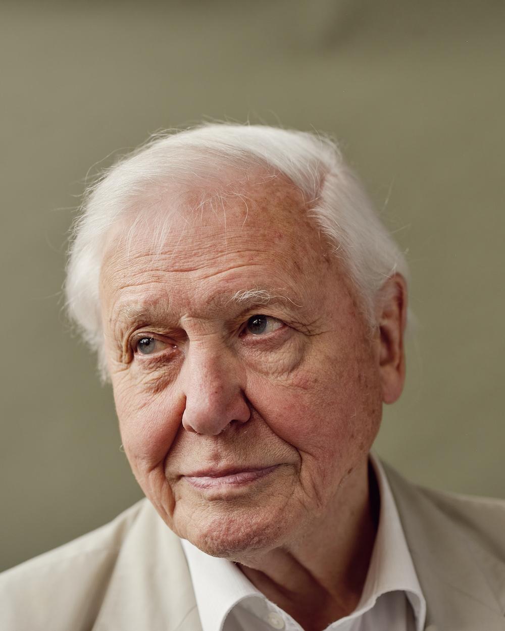 David Attenborough for Sunday Times Magazine