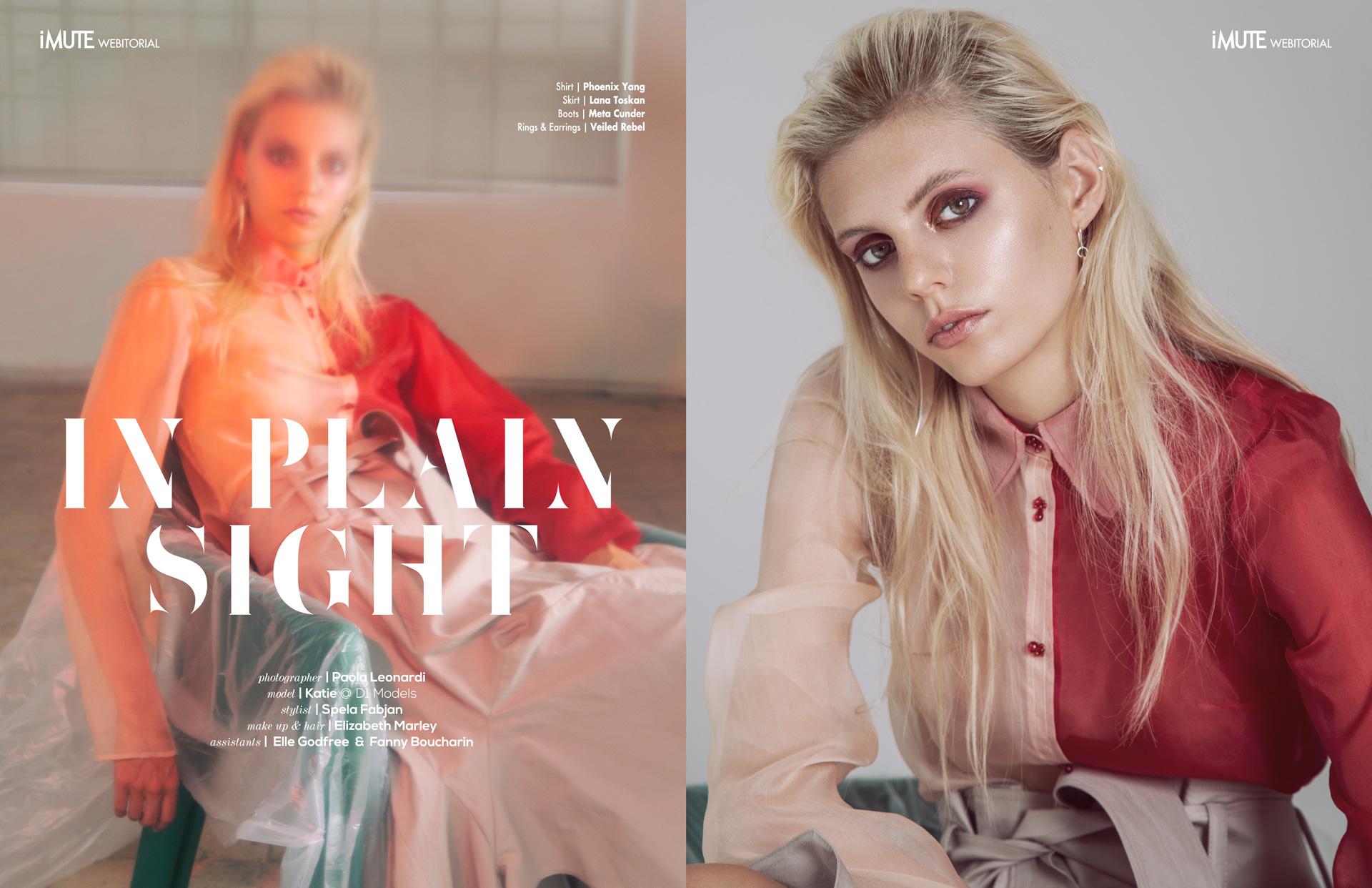 IN-PLAIN-SIGHT-webitorial-for-iMute-Magazine.jpg