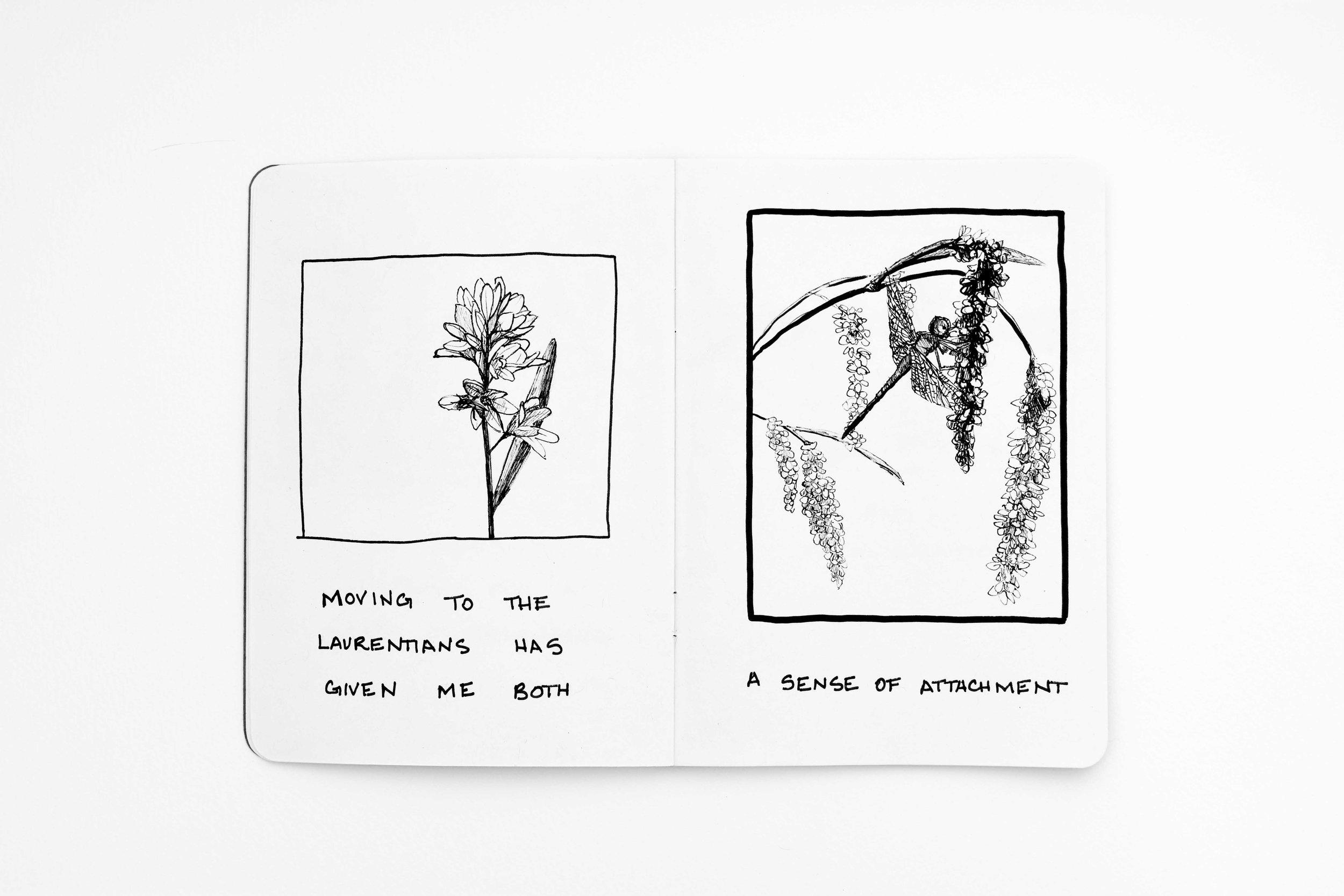 tiffany-moore-sketchbook-landscape (4 of 13).jpg
