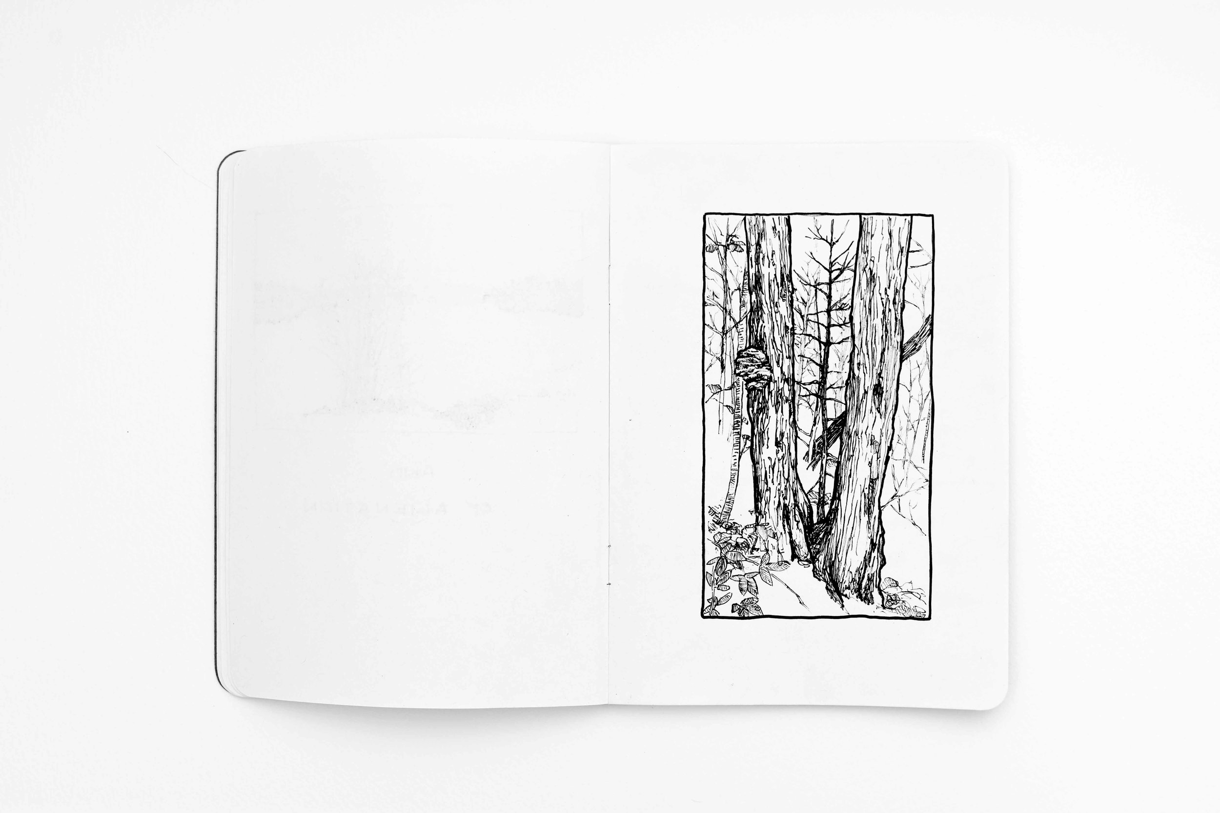 tiffany-moore-sketchbook-landscape (6 of 13).jpg
