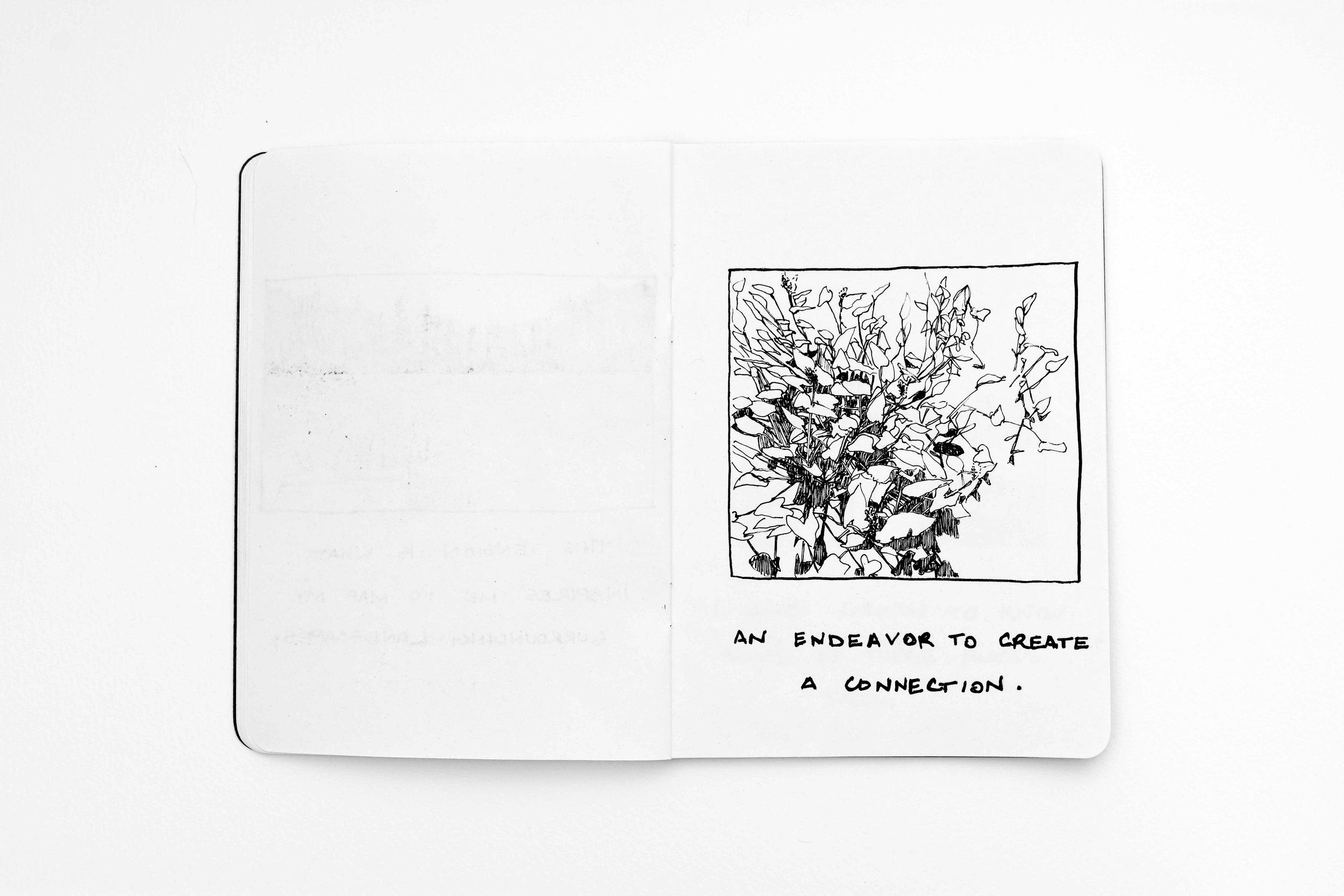 tiffany-moore-sketchbook-landscape (8 of 13)-2.jpg