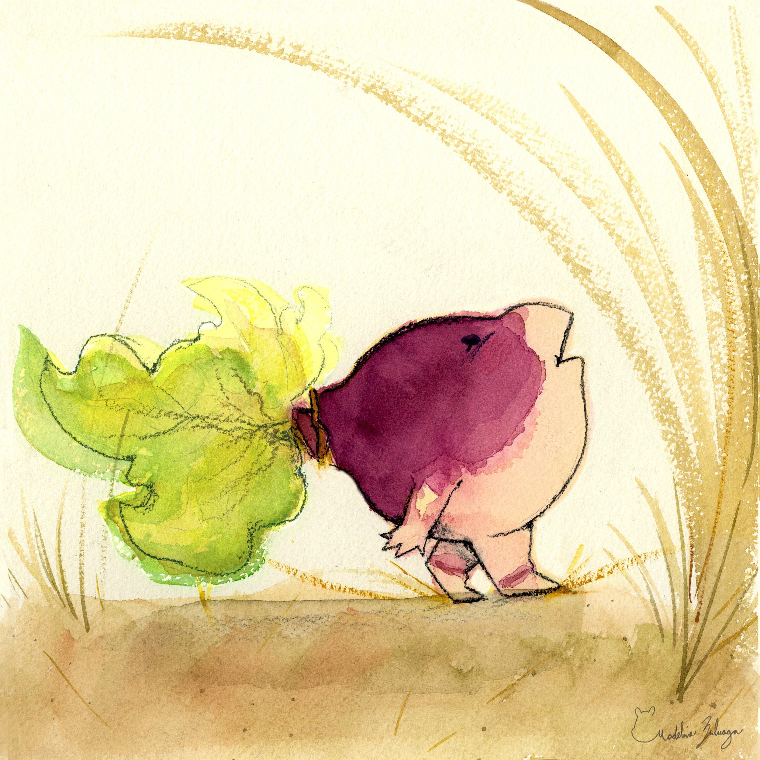 Madeline-zuluaga-Turnip-child-vignette-2.jpg