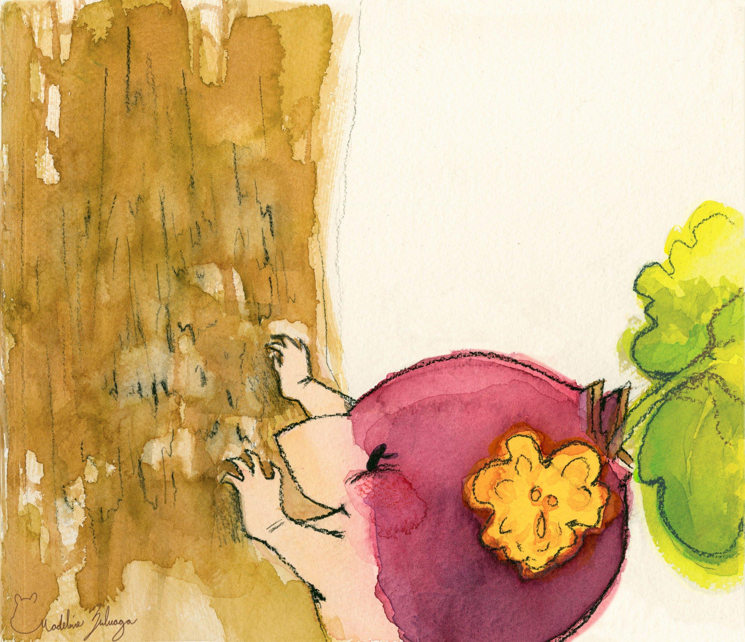 Madeline-Zuluaga-Turnip-Child-vignette-1.jpg