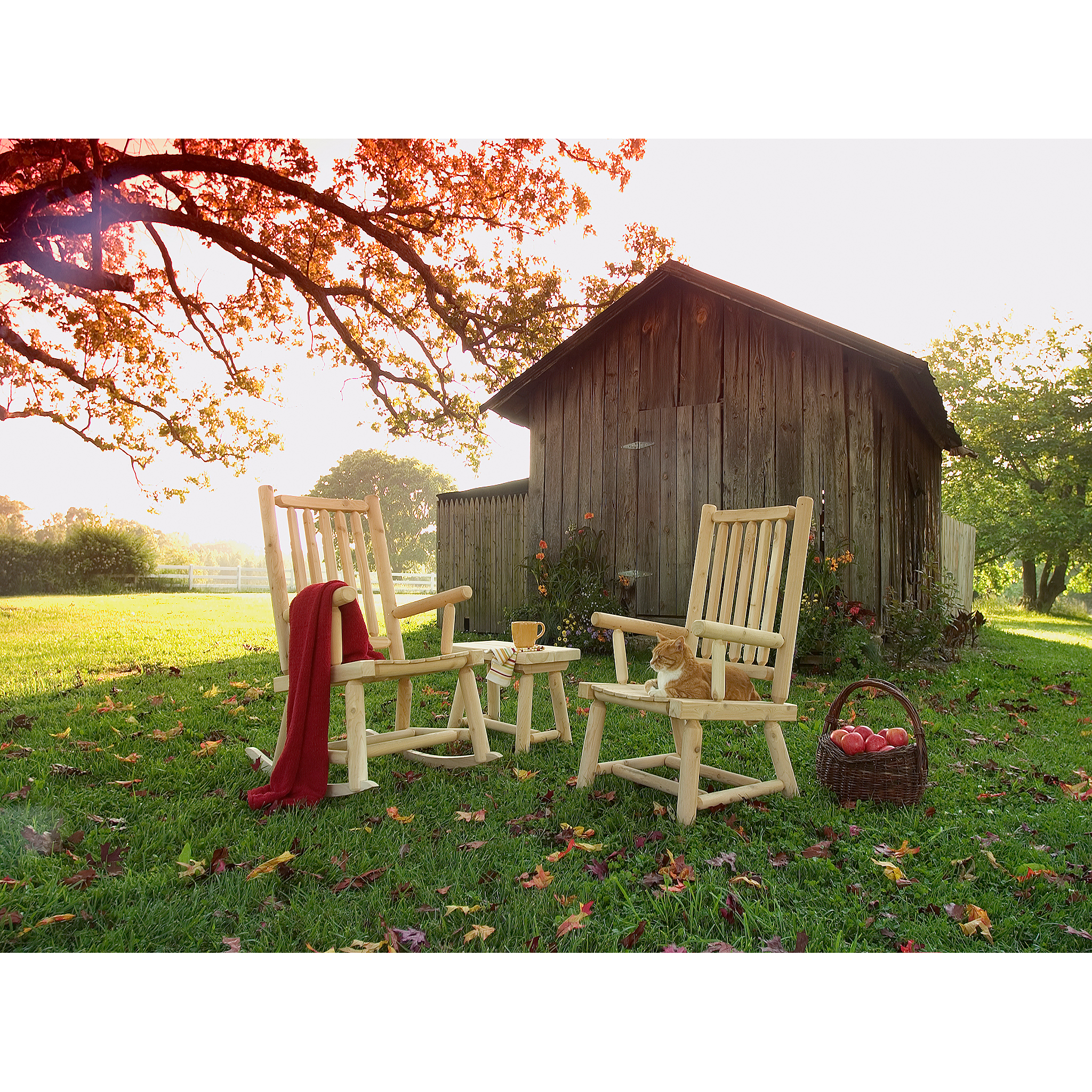 Product photograph of wooden furniture with cat in front of barn for catalog