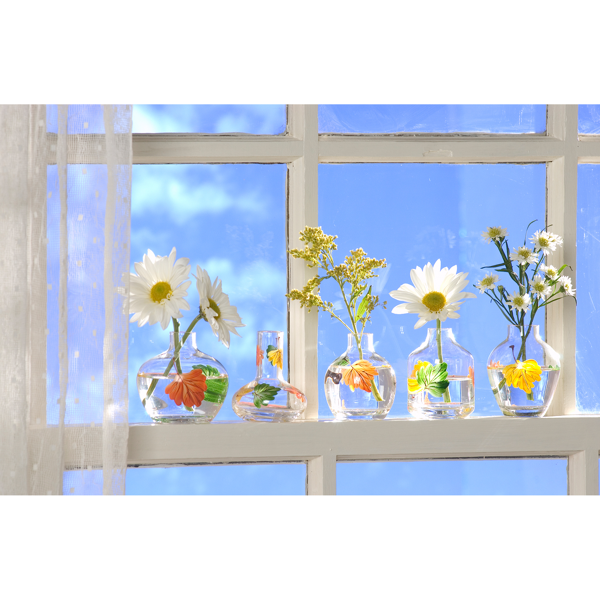 Flowers in vases on windowsill photographed for e-commerce