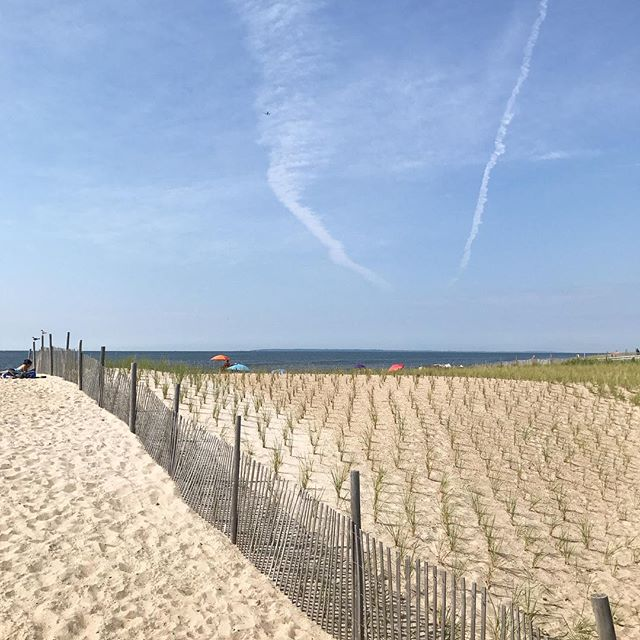 If you are not at the beach today you should change your plans, skip work and come play with us. This is possibly the most beautiful day of the summer.