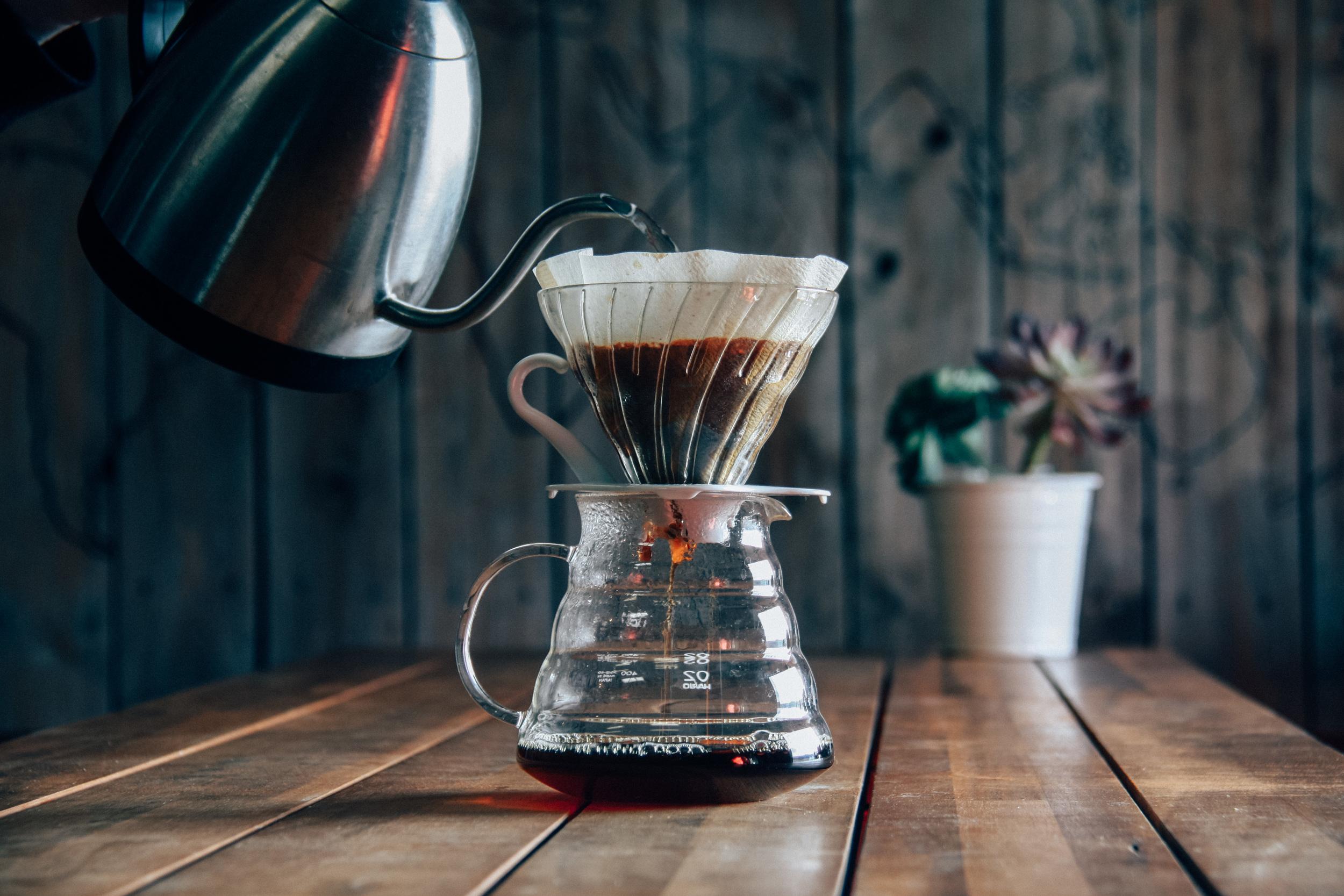 treeline-coffee-roasters-bozeman-coffee-sourcing