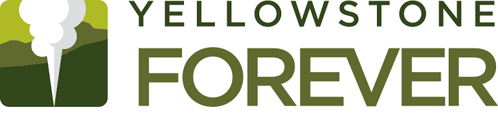 YF_Logo_Horizontal_RGB-728x354.png