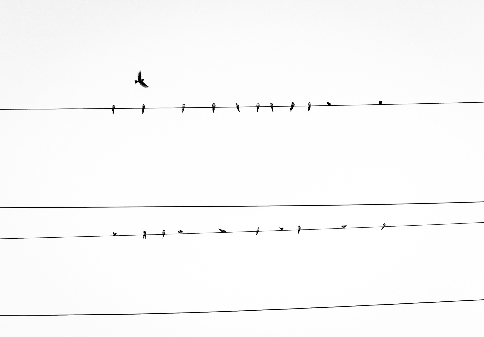electrical-line-1149980_1920.jpg
