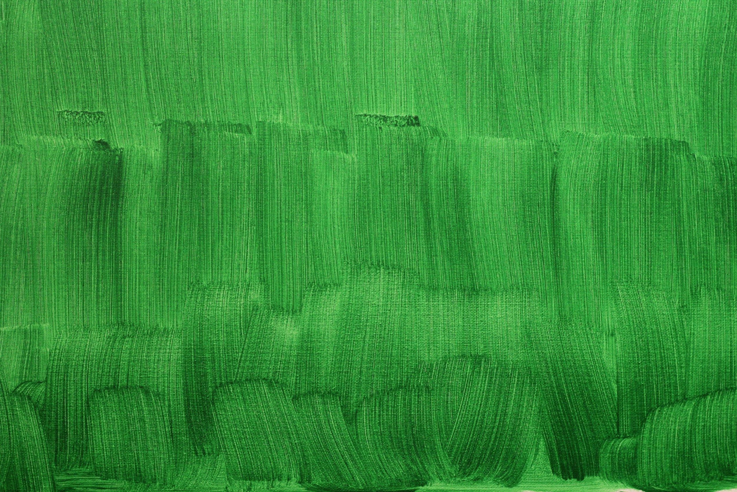 Green_Screen_Dreams_Keaton_Fox_2.jpg