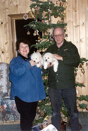 christmas-pups-300.jpg