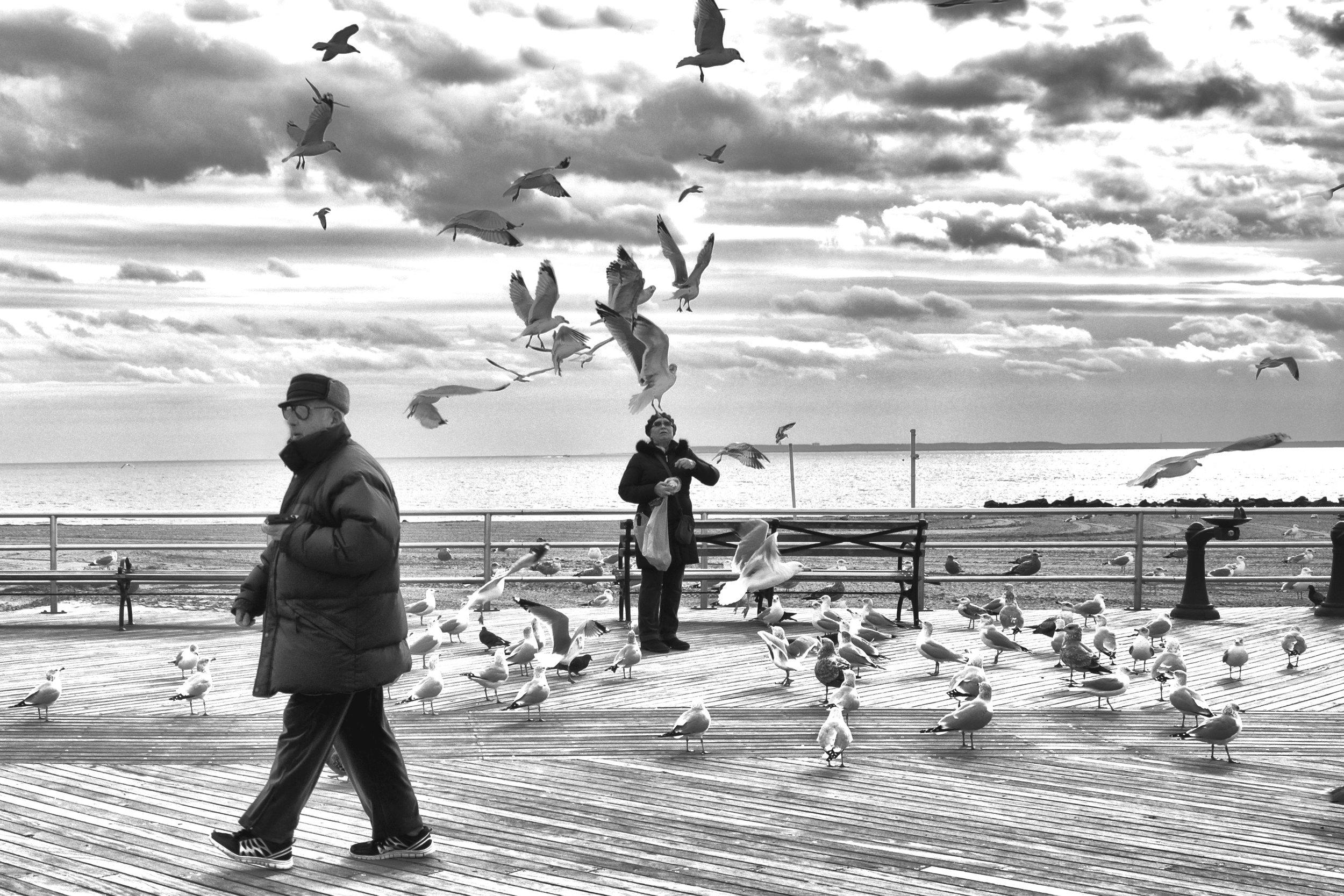 Coney Island Winter 2017