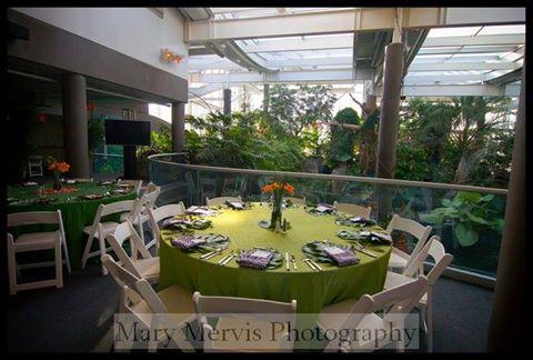 pittsburgh-zoo-wedding-1.jpg